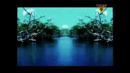 Paul Van Dyk - For An Angel (videomix)