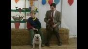 Мистър Бийн с Теди на кучешка изложба