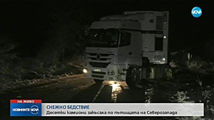 ЗИМНО БЕДСТВИЕ: Сняг и виелици блокираха половин България (ОБЗОР)