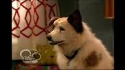 Куче с блог - 2 епизод Бг Аудио