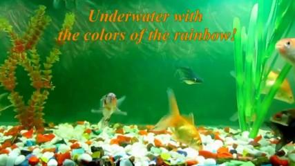 Под водата с цветовете на дъгата! ... ( Eldar Mansurov music) ...