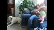 куче се изплашва от бебе