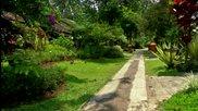 Без Багаж - Индонезия #1 - Ботаническа градина, тропически растения и животни