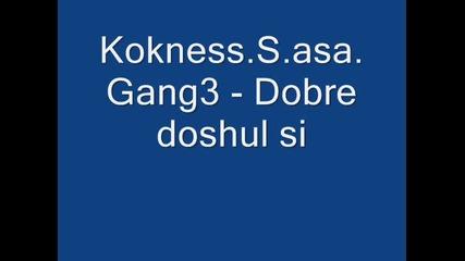 Kokness.s.asa.gang3 - Dobre doshul si