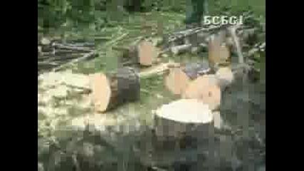 Beogradski Sindikat - Vec Videno