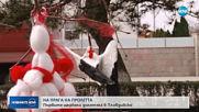Първите щъркели долетяха в Пловдивско