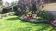 озеленяване като в ботаническа градина