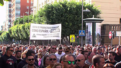 Spain: Farmers protest industry policies in Almeria