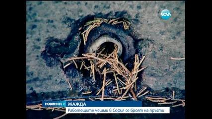 'Вода гази, жаден ходи' или защо почти няма работещи чешми в София - Новините на Нова 15.08.2014