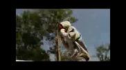 Stick Man - I Believe