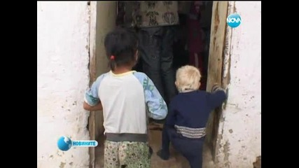 Новините на Нова - 24.10.2013 (обедна емисия)