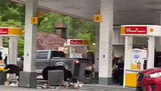 USA: Bears rummage through bins at petrol station in eastern Tennessee
