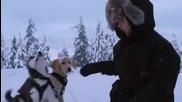 Снежни приятели (2008) Бг Аудио/ Snow Buddyes Bg Audio