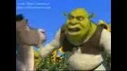 Shrek (turkce)