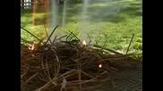 Как Да Запалим Огън Без Запалка И Кибрит