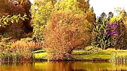 Шансон. Красивые Песни и Видео! Осенний шарм.