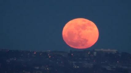 Луната 19 март 2011г. - най близко от 18 години насам