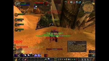 World Of Warcraft Wsg