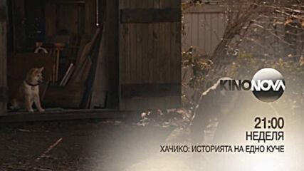 """""""Хачико: Историята на едно куче"""" на 31 януари, неделя от 21.00 ч. по KINO NOVA"""