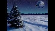 Коледна Песен - Елхови Лес