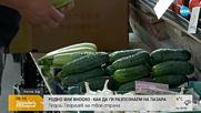 Ще има ли достатъчно български плодове на пазара?