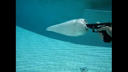 Заснет Глок под Вода