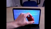 Яйце срещу Лаптоп