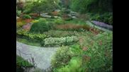 garden princess-music Richard Abel
