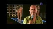 Орхан Мурад - Краля На Нощта