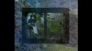 Neda Ukraden -шуми, шуми, Яворе