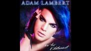 Adam Lambert - Fever (from For Your Entertainment )