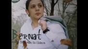 bernat new song 2012 2013-zivinava mo zivoto sar mulo ( album 2012 ) Ramiz-italia-pesaro-brle.avi -