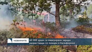 60 000 души са евакуирани заради разрастващи се пожари в Калифорния