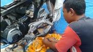Иновативен метод за производство на царевични семена
