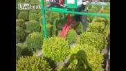 Машина за оформяне на храсти