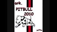 ork. Pit Bull 2010