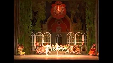 Веса Тонова, Александър Александров - Дон Кихот балет