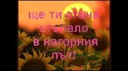 България - Дамян Дамянов