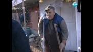 Канабис Отглеждат Баби и Дядовци ! Разследване 29.01.12