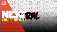 NEXTTV 032: Viral of the Week