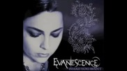 Evanescence - What You Want (превод)