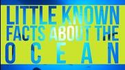 Малко известни факти за Океаните