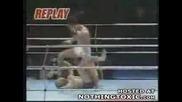 Brutal Stomp Knockout