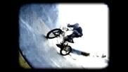 Bmx - Dave Mirra