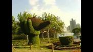 Глетки От Императорските Градини В Пекин