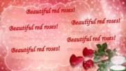 ... Красиви червени рози ...