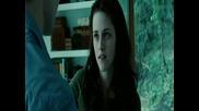 Bella ft. Edward