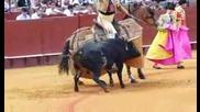 Корида - Севиля,  Испания #1