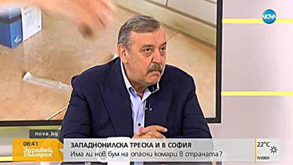 Западнонилска треска и в София: Има ли бум на опасни комари в страната?