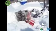 Хапни малко сняг